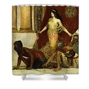 Delilah And The Philistines Shower Curtain