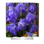 Delphinium And Butterfly Shower Curtain