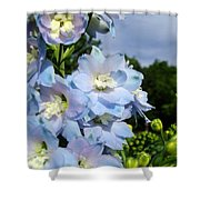 Delphinium With Cloud Shower Curtain