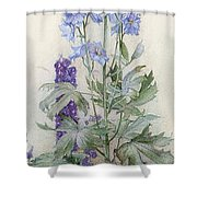 Delphiniums Shower Curtain by James Valentine Jelley