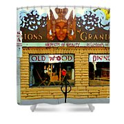 Delusions Of Grandeur Bank St Furniture Art Store On The Glebe Paintings Of Ottawa Scenes C Spandau Shower Curtain