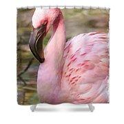 Demure Flamingo - Digital Art Shower Curtain