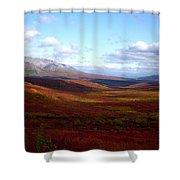 Denali In The Autumn Shower Curtain