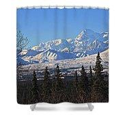 Denali Winter Shower Curtain