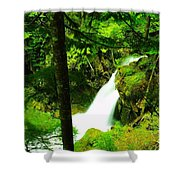 Denny Camp Falls  Shower Curtain
