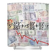 Derivatives Financial Debacle - Black Scholes Equation Shower Curtain