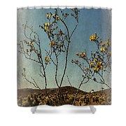 Desert Bloom Shower Curtain