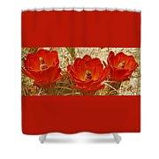 Desert Blooms Shower Curtain