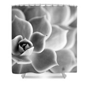 Desert Center Shower Curtain
