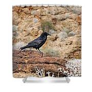 Jet Black Desert Dweller Shower Curtain