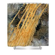 Desert Erg Iguidi Algeria Shower Curtain