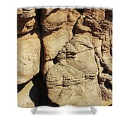 Desert Face 2 Shower Curtain