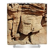 Desert Face Shower Curtain