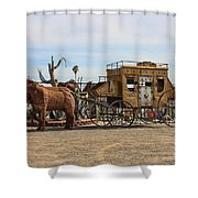 Desert Find Shower Curtain