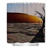 Desert Floor Shower Curtain