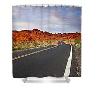 Desert Highway Shower Curtain