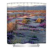 Desert In Bloom Shower Curtain