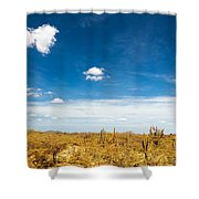 Desert Landscape With Deep Blue Sky Shower Curtain
