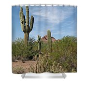 Desert Landscape With Saguaro Shower Curtain
