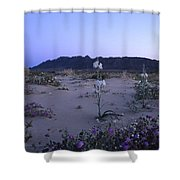 Desert Lily Sanctuary California Shower Curtain