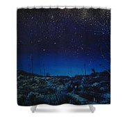 Desert Meteor Shower Curtain