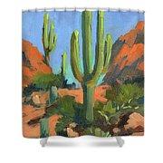 Desert Morning Saguaro Shower Curtain