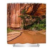 Desert Oasis - Coyote Gulch - Utah Shower Curtain