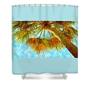 Desert Palm Shower Curtain