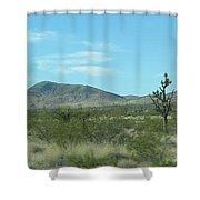 Desert Panoramic Shower Curtain