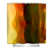Desert Pattern 1 Shower Curtain