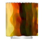 Desert Pattern 1 Shower Curtain by Amy Vangsgard