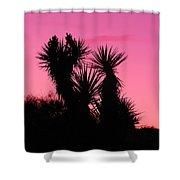 Desert Pink Shower Curtain