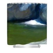 Desert Pool Shower Curtain