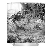 Desert Snowstorm Black And White Shower Curtain