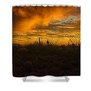 Desert Southwest Skies  Shower Curtain