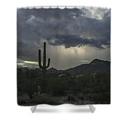 Desert Storm Beauty Shower Curtain