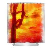 Desert Sunset Photo Art 01 Shower Curtain