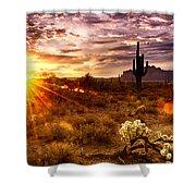 Desert Sunshine  Shower Curtain