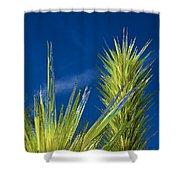 Desert Towers - Detail Shower Curtain