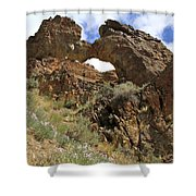 Desert Wildflowers Grand Arch  Shower Curtain