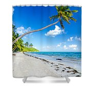 Deserted Beach And Palm Trees Shower Curtain