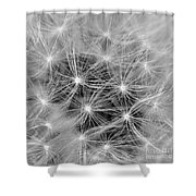 Designed To Fly Shower Curtain