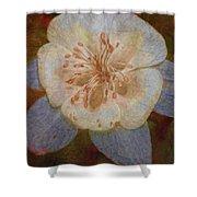 Designer Floral Shower Curtain