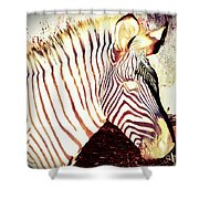 Designs From Nature 2 Shower Curtain