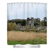 Desmond Castle Views Shower Curtain