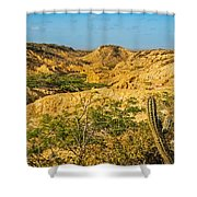 Desolate Desert Landscape Shower Curtain