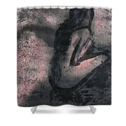 Desolation Boulevard Shower Curtain
