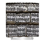 Detail Of A Carved Mani Stone In The Everest Region Of Nepal Shower Curtain