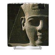 Detail Of Pharaoh Head At Entrance Shower Curtain
