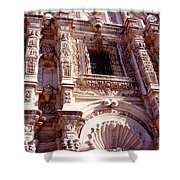Detail Of The National Cathedral Of Guatemala Shower Curtain